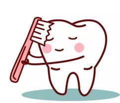 兒童的哪些牙齦容易外傷