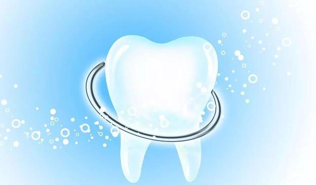 牙齒的功能?